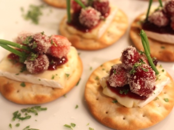 Brie and Cranberry Circles with Fig Jam